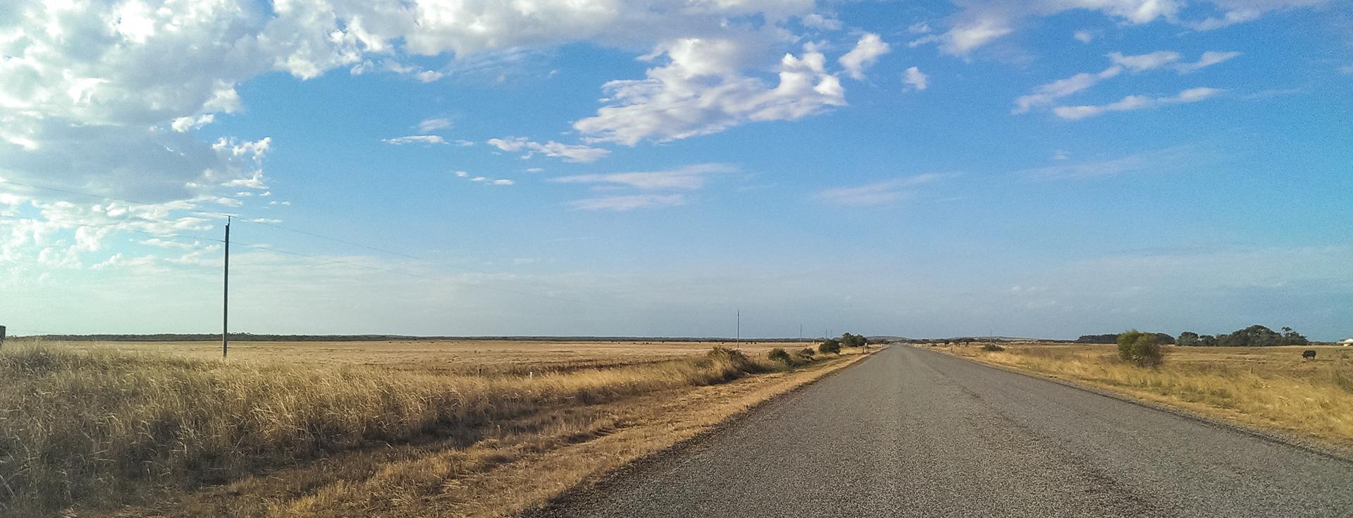 Desolattion of WA 4